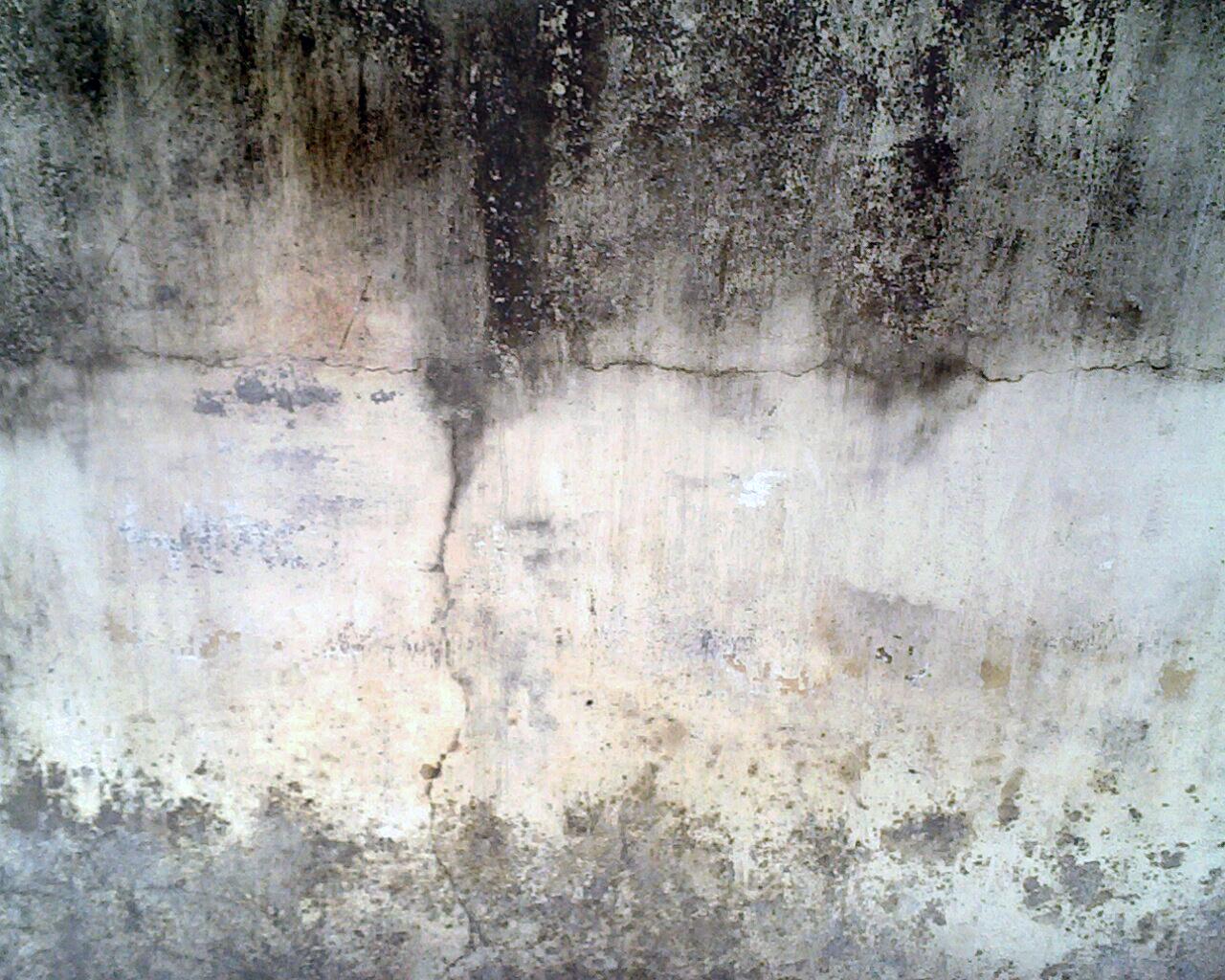 Damp Rock Texture Wall